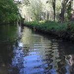 Marais Poitevin en Vendée